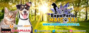 Expo feria mascotas Pirque 2017