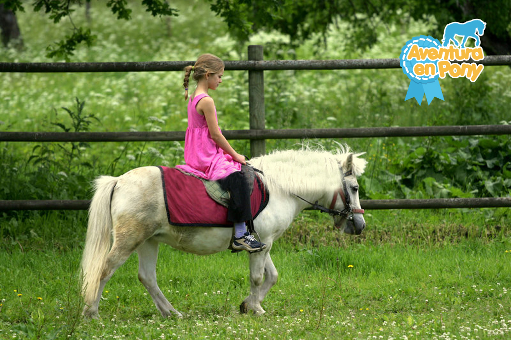 beneficios pony candy pop 3
