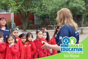 mini granja educativa chile 11