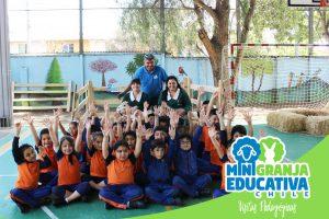 mini granja educativa chile 6