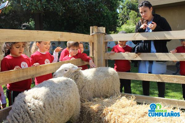 niños con oveja