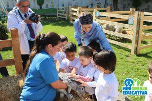 visitas educativas mini granja (1)